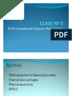 05 Respiratorio Equinos 2015 [Modo de Compatibilidad]