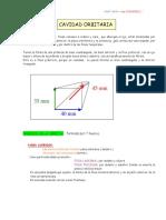 cavidadorbitaria.pdf