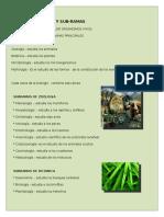 myslide.es_ramas-y-subramas-de-la-biologia.docx