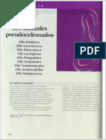 """capítulo 15 del libro """"Los principios integrales de la zoología"""""""