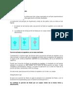Principio de Arquimides, Densidad Relativa y Grados...