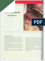 """capítulo 16 del libro de """"Los principios integrales de la zoología"""""""