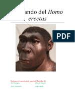 Homo Erectus 1BACH A
