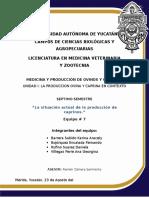 Resumen-mapa-caprino-eq7 version 2.docx