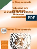 Declaração Universal Dos Direitos Humanos  - Trabalho escravo infantil