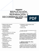 Replicacion Eucaritas (Libro)
