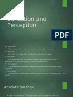 Sensation and Perception (1)