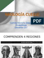 MIOLOGIA CUELLO.ppt