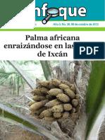 Palma Africna Enfoque 30 Ixcán y Raxruhá