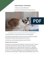 Penyakit Kucing Jahat (Panleukopenia)