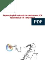 Expressão gênica por qPCR