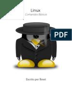 Curso Hacking - Aula 01 - Linux - Comandos Básicos.pdf