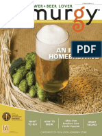 Introduction to Homebrewing