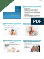 Sistema Respiratório Clínica Médica1