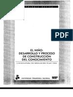 AAA.buenA. _El Niño Desarrollo y Proceso de Construcción Del Conoc_ANT BASICA