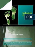 Indicadores Del Impacto Ambiental