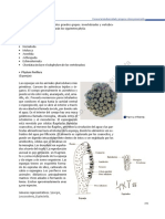 BIOLOGIA I-parte 3.pdf