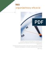 03 Metas Organizativas y Eficacia