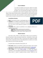 PULSO CARDÍACO, RITMO CARDÍACO Y RESISTENCIA COMO VALENCIA FÍSICA
