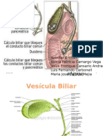 Patologia de vias Biliares (2).pptx
