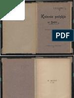 Marcin Czermiński, Kolonie Polskie w Bośni