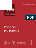 1 Principio pro persona (1).pdf