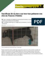 Sacrifican de Un Tiro a Un Toro Tras Pelearse Con Otro en Yuncos (Toledo)