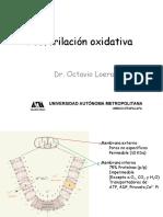 2_Fosforilacion_Oxidativa