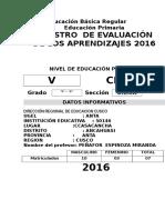 Registro Auxiliar de Evaluacion