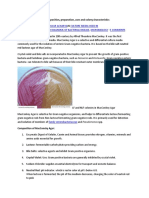 Principles of MacConkey Agar, Mannitol Salt Agar, Blood Agar Plate and Chocolate Agar Plate