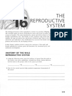 ap coloring workbook the reproductive system