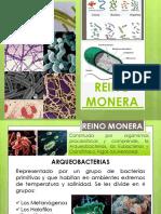 6. REINO MONERA.pdf