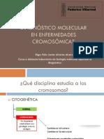 Diagnostico Molecular de enfermedades cromosomicas.pdf