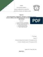 ACCION DE AGONISTAS Y ANTAGONISTAS ADRENERGICOS