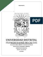 PRESUPUESTO.doc.docx