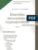 Sarcocystidae, Eimeriidae e Cryptosporididae