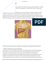 Obat Tradisional Liver.pdf