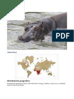 Animales África