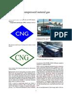 Compressed natural gas.pdf