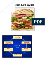 System Life Cycle Sandwich