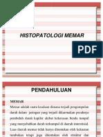 Histopatologi Memar
