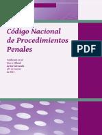 CNPP del CINSJP MICH.pdf