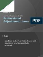 Professional Adjustment ( Week 4)