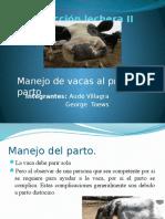 Manejo de vacas al primer parto