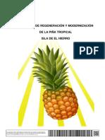 Proyecto Reg Mod Pina Tropical