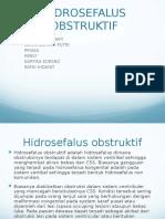 Power Point Hidrocephalus