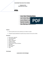 Práctica de Lbiologiaaboratorio de Biología N08 (1)