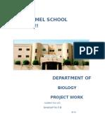Biology Investigatory Project 2015