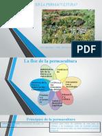 Presentación1 permacultura.pptx
