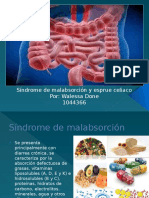 Sindrome de malabsorcion